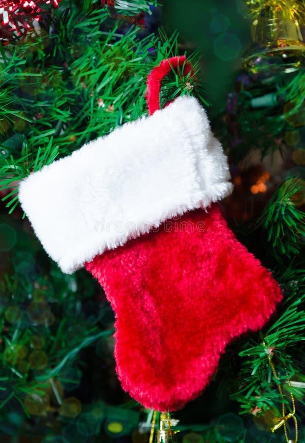 Weihnachtssocke auf dem Baum lizenzfreie stockfotos