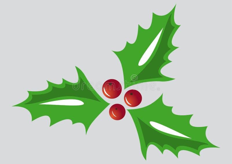 Weihnachtsstechpalme, grüne Blätter, rote Beeren auf grauem Hintergrund lizenzfreie abbildung