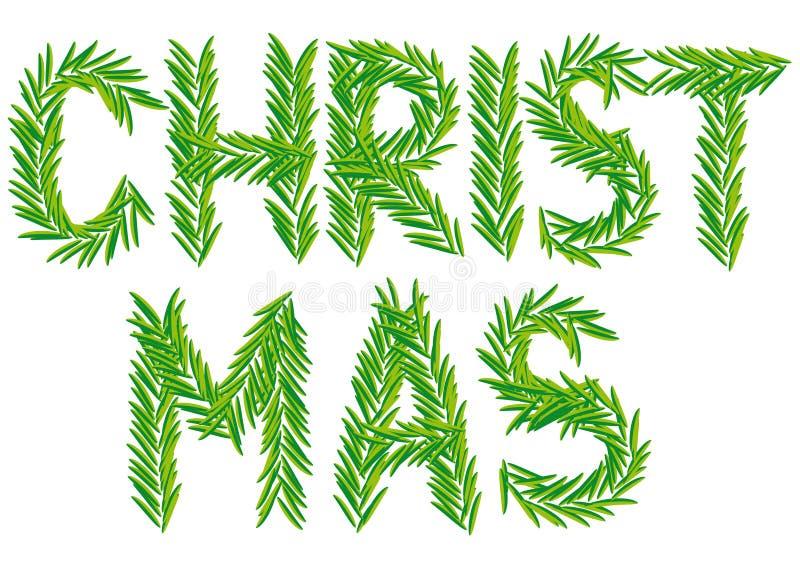 Weihnachtstannenzweig vektor abbildung