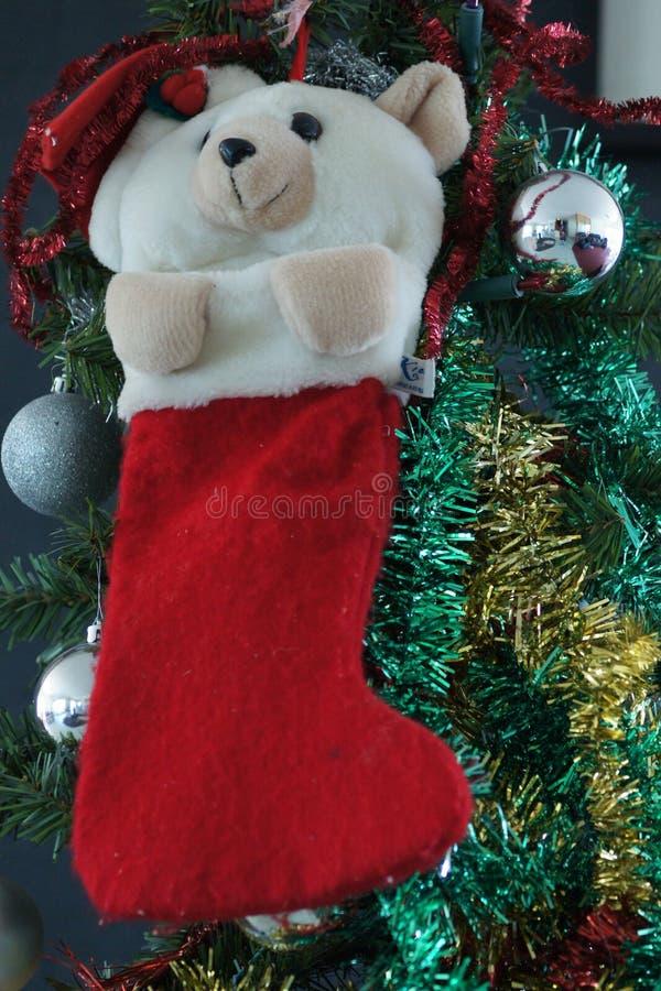 Weihnachtsteddybär auf meinem Weihnachtsbaum stockfotos