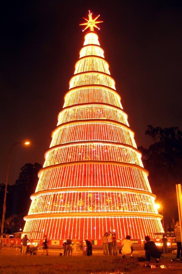 Gigantischer Weihnachtsbaum Nachts Lizenzfreies Stockbild