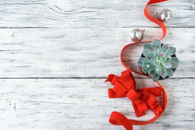 Weihnachtszusammensetzung, Modell mit saftiger Anlage der grünen Kaktusaloe, rotes Band, Bogen und silberne Weihnachtsverzierung stockfotografie