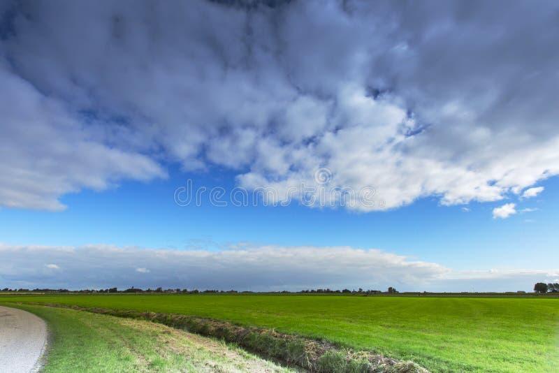 Weiland langs de waddenkust, Meadow along the Wadden Sea stock photo