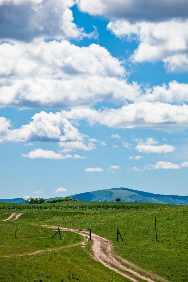 Weiland met Wolken stock afbeelding