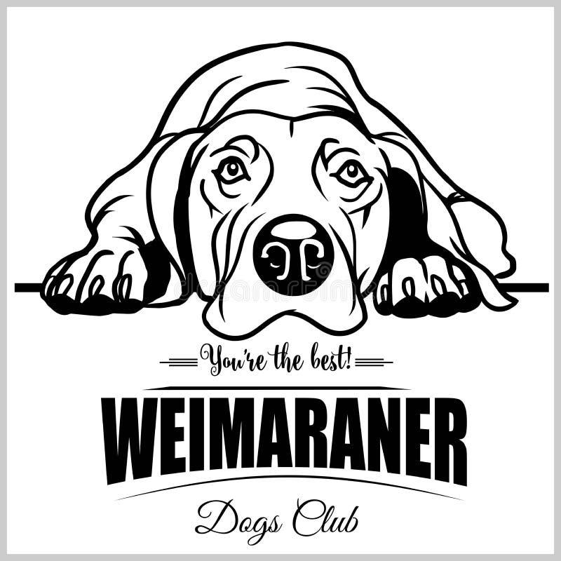 Weimaraner - vectorillustratie voor t-shirt, embleem en malplaatjekentekens stock illustratie
