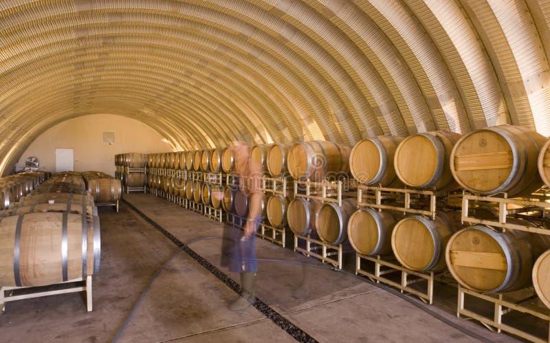Wein-Alter in den Fässern, Ghose Bild von Winemaker lizenzfreies stockfoto