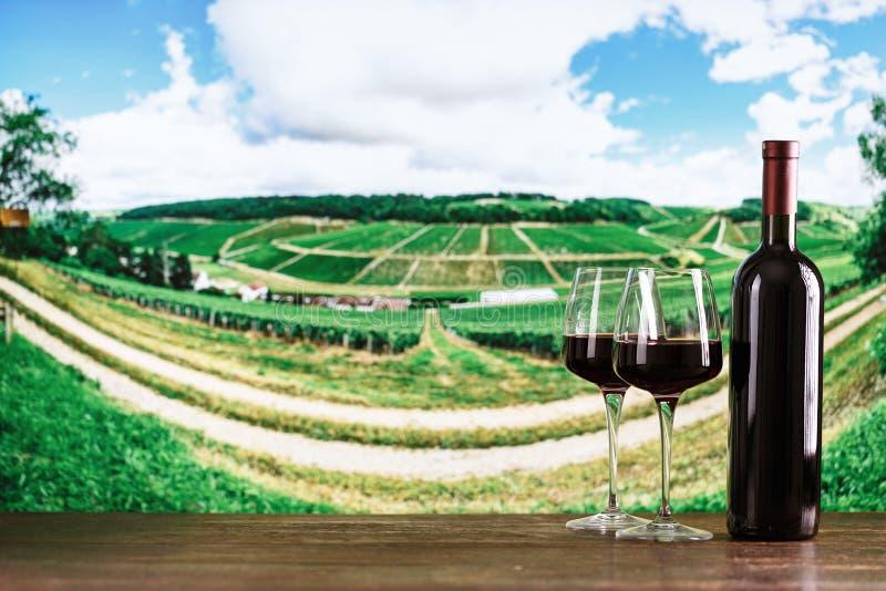 Wein in den Flaschen gegen den Weinberghintergrund stockfoto