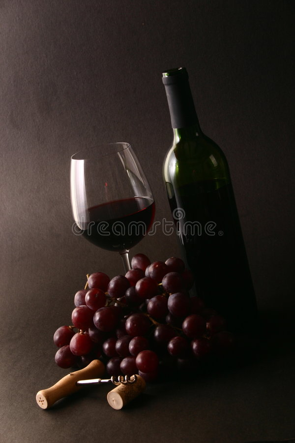 Wein mit Trauben lizenzfreie stockfotografie