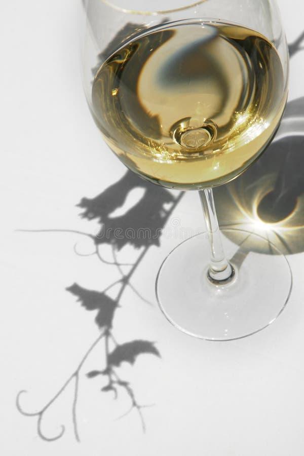 Wein und Rebe lizenzfreie stockbilder