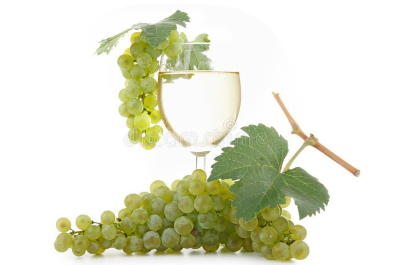 Wein und Trauben stockfotografie