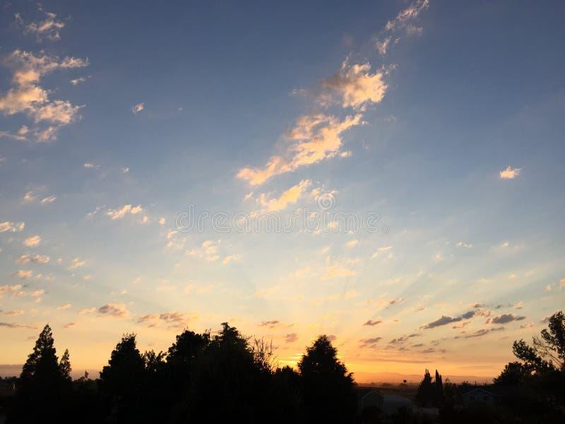 Weinanbaugebiet-ländlicher Ranch-Sonnenuntergang mit Sun-Strahlen und -bäumen stockbilder