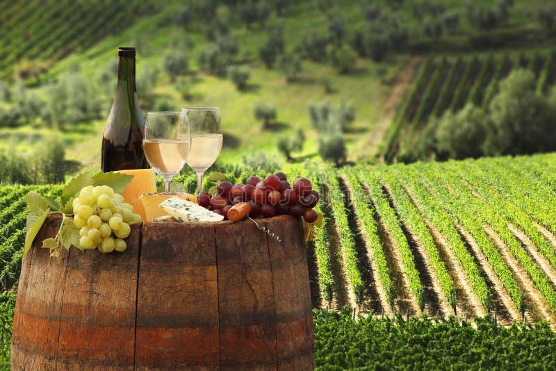 Weinberg in Chianti, Toskana lizenzfreies stockbild