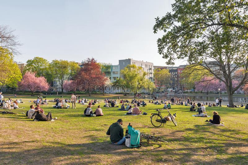 Weinberg park in Berlin, Germany. BERLIN, GERMANY - APRIL 18, 2019: People have a rest near small lake in sunset city Weinberg park at spring. Berlin is the royalty free stock image