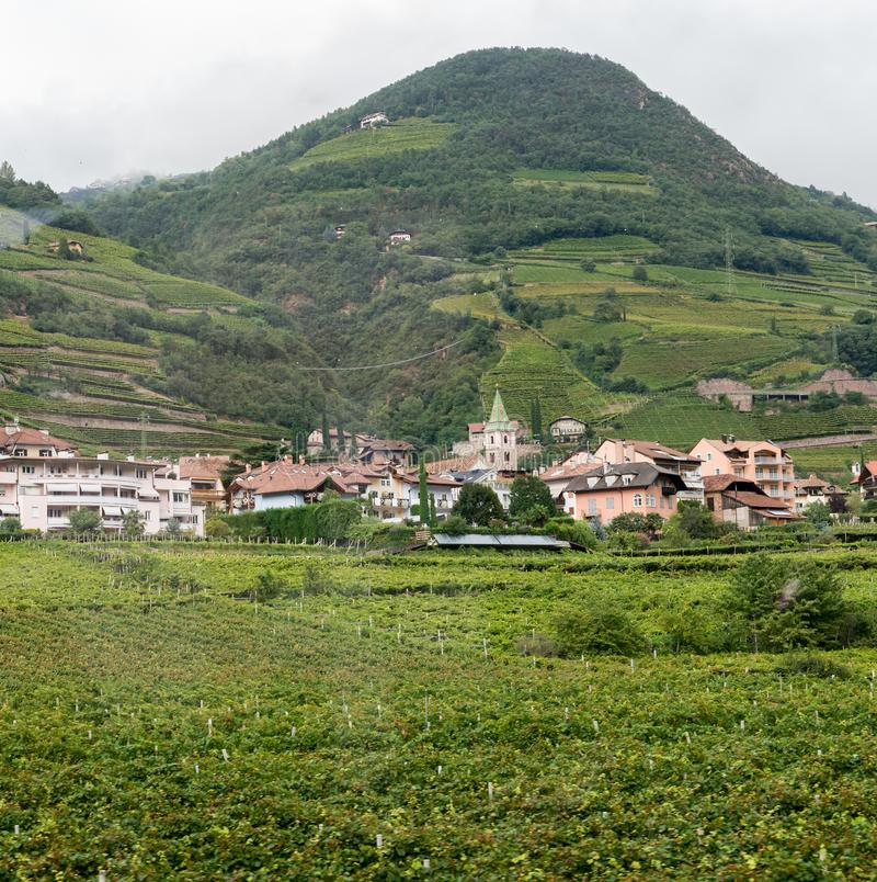 Weinberg und Stadt in Italien stockfotografie