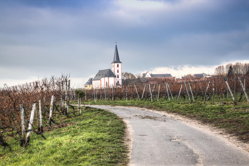 Weinberge mit Kirche in Hochheim, Deutschland lizenzfreie stockbilder
