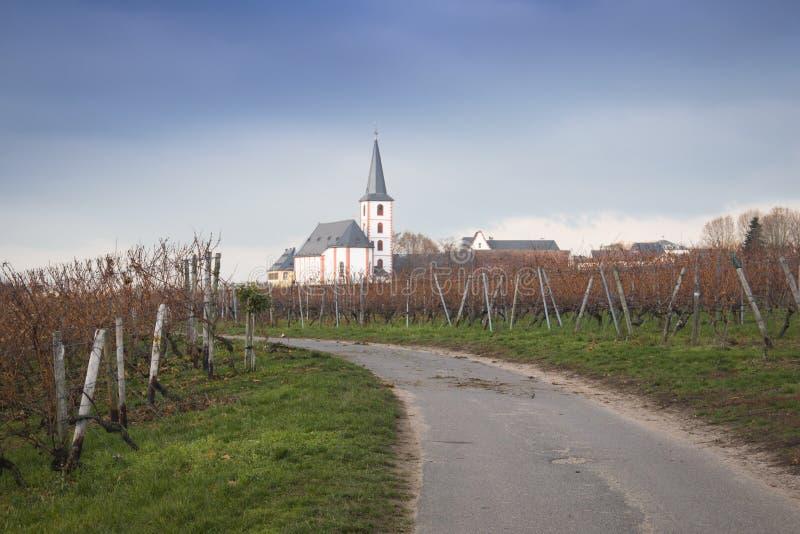 Weinberge mit Kirche in Hochheim, Deutschland lizenzfreie stockfotografie