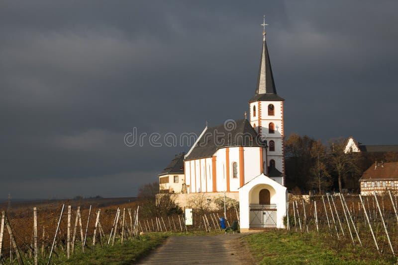 Weinberge mit Kirche in Hochheim, Deutschland stockbilder