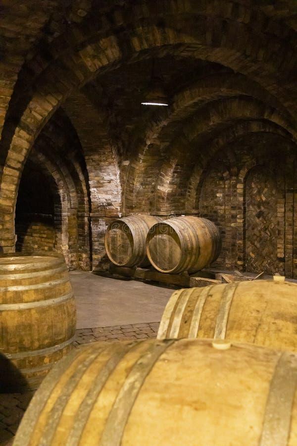 Weinfässer im Keller, Szekszard, Ungarn stockfotografie