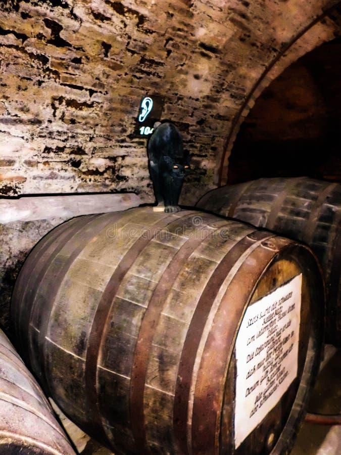 Weinfaß und eine schwarze Katze lizenzfreie stockfotografie