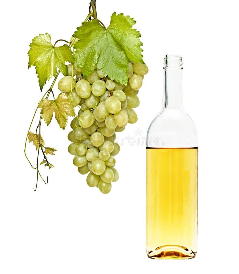 Weinflasche und Weinstock stockfoto