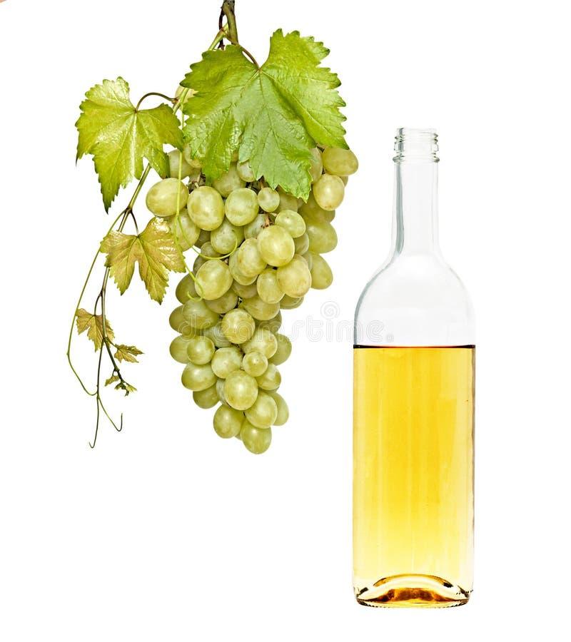 Weinflasche und Weinstock lizenzfreie stockbilder