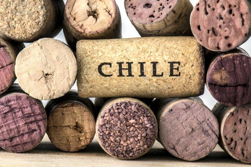 Weinflaschenkorken von Chile 05 stockfoto
