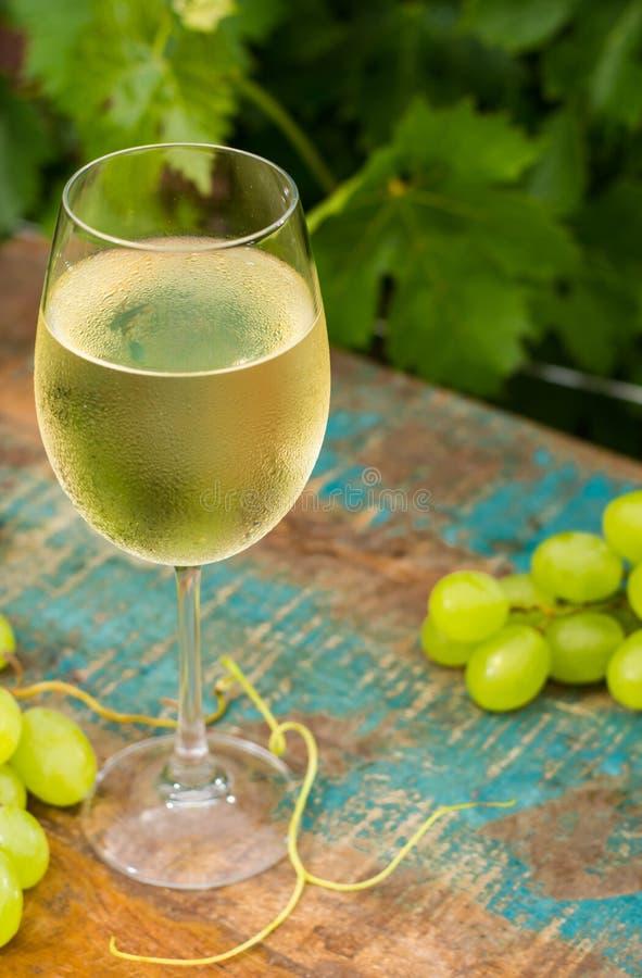 Weinglas mit eiskaltem Weißwein, Terrasse im Freien, Wein tasti lizenzfreie stockfotos