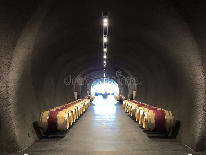 Weinhöhle stockfotografie