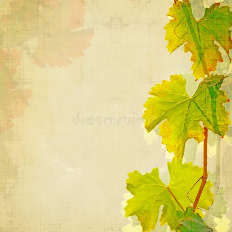 Weinhintergrund stock abbildung