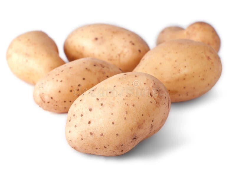 Weinig aardappels die in wit worden geïsoleerdr stock foto's