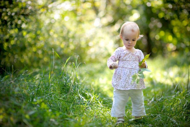 Weinig baby in een bosholdingsesdoorns gaat weg stock afbeelding