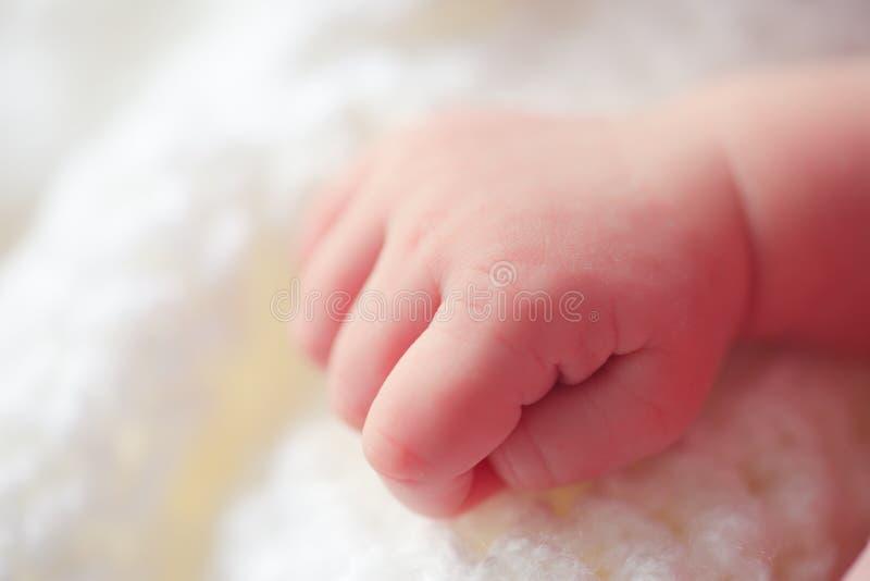 Weinig babyhand stock afbeelding