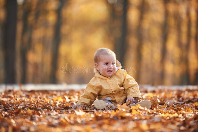 Weinig babyjongen die onder de gevallen bladeren in het de herfstpark kruipen bij zonnige dag stock afbeeldingen