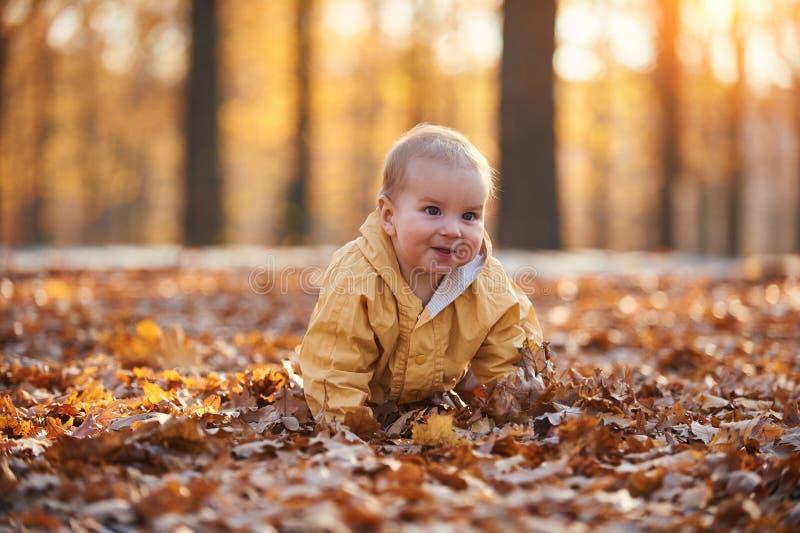 Weinig babyjongen die onder de gevallen bladeren in het de herfstpark kruipen bij zonnige dag royalty-vrije stock foto