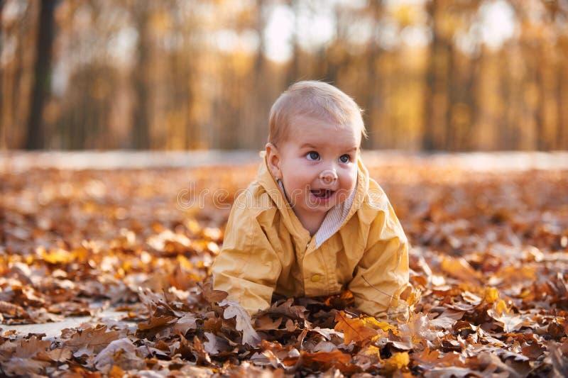 Weinig babyjongen die onder de gevallen bladeren in het de herfstpark kruipen bij zonnige dag stock fotografie