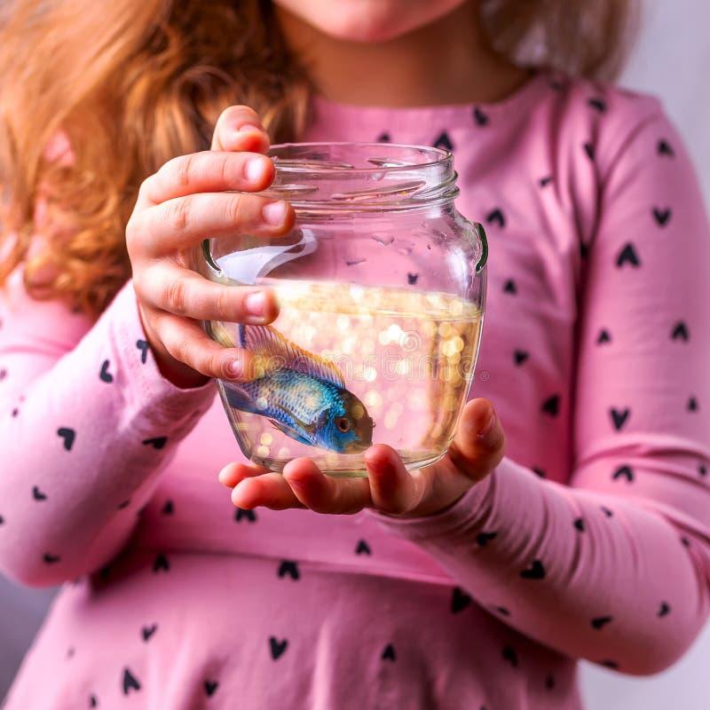 Weinig babymeisje die een fishbowl met een blauwe vis houden Zorgconce royalty-vrije stock foto