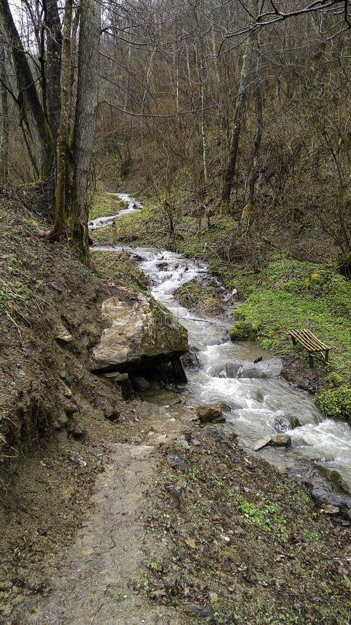 Weinig bergrivier stock afbeeldingen