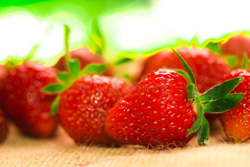 Weinig bessen met verse aardbeien op een stof royalty-vrije stock foto