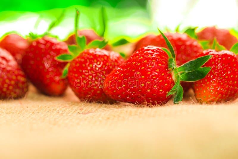 Weinig bessen met verse aardbeien op een stof stock foto's