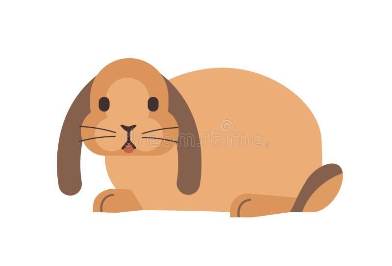 Weinig binnenlands konijn of konijntje met hangende oren Grappig aanbiddelijk geacclimatiseerd die dier op witte achtergrond word vector illustratie