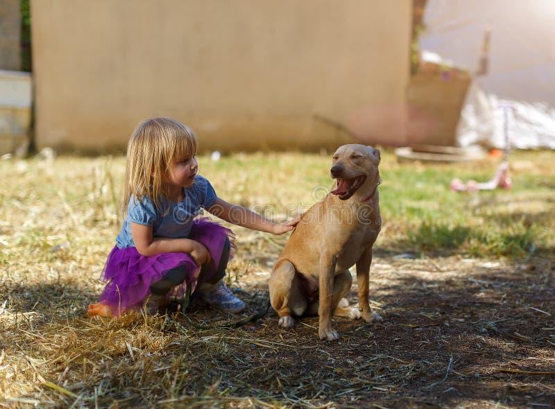 Weinig blond meisje met haar retrieverhond royalty-vrije stock fotografie