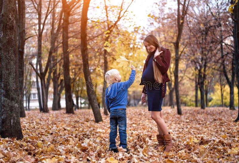 Weinig blonde jongen geeft zijn zwangere moeder geel blad De herfstpark op de achtergrond stock fotografie