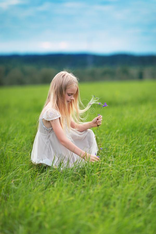 Weinig blondemeisje het verbeteren bloeit op weide stock fotografie