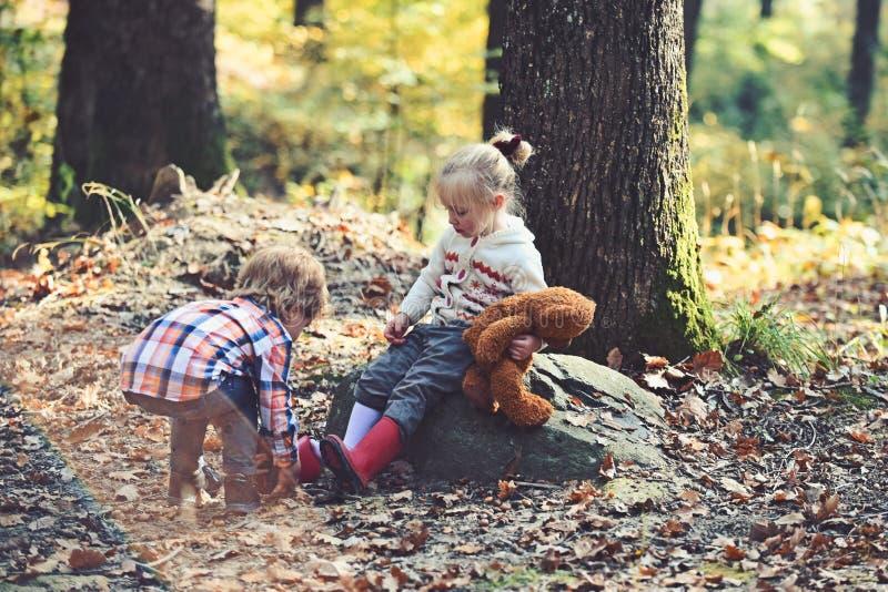Weinig broer geeft voor babyzuster in het park van de de herfststad stock fotografie
