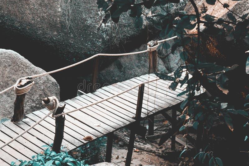 Weinig brug in wildernis stock fotografie