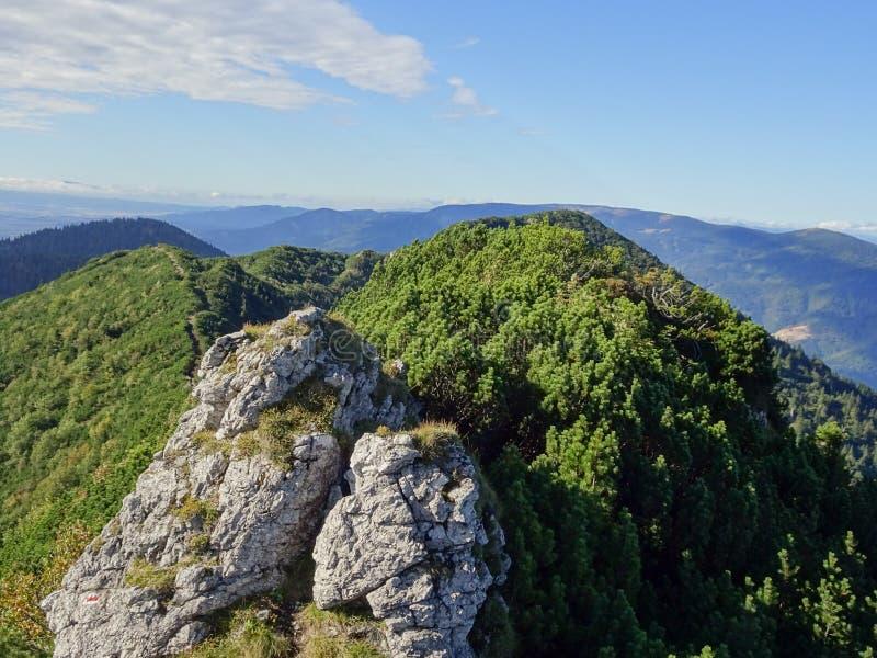 Weinig fatra, Slowakije royalty-vrije stock foto's
