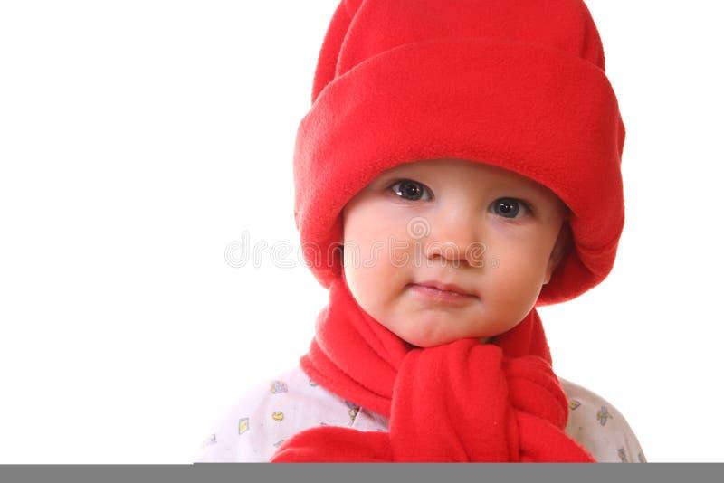 Weinig jong geitje in de rode hoed, royalty-vrije stock afbeelding