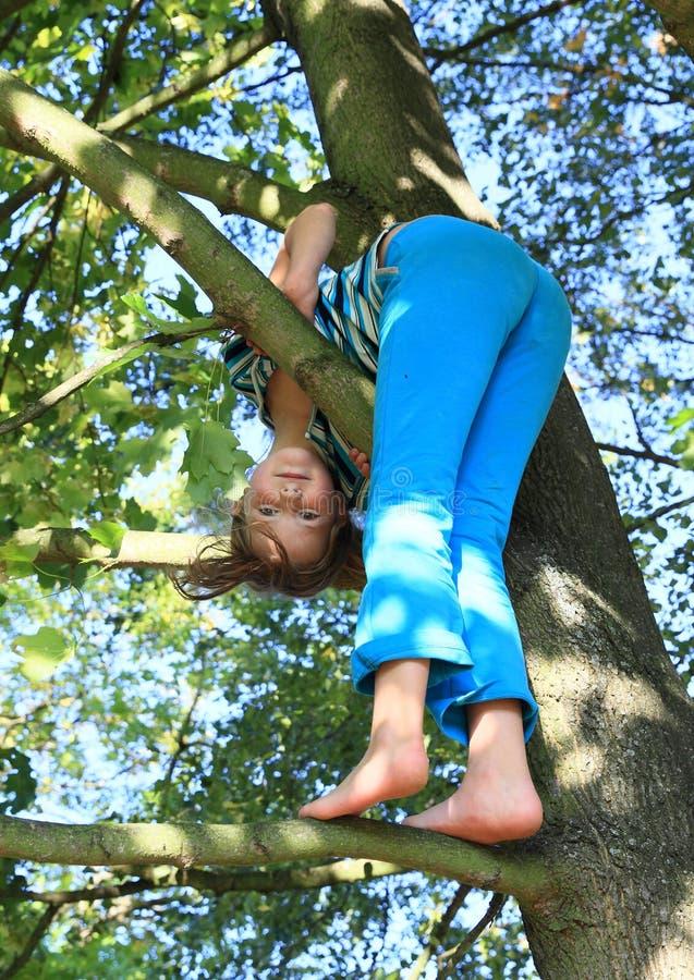 Weinig jong geitje - meisje die zich op tak bevinden royalty-vrije stock foto