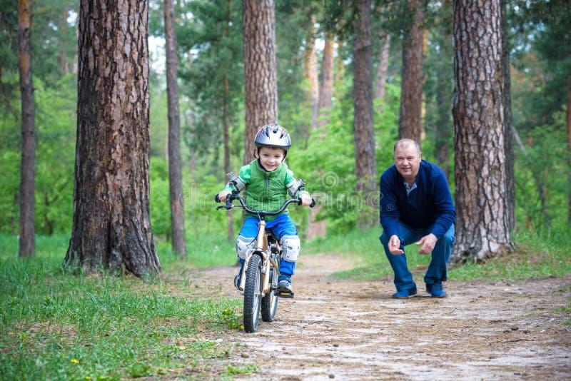 Weinig jong geitjejongen van 3 jaar en zijn vader in de herfstbos met a royalty-vrije stock afbeeldingen