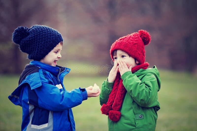 Weinig jongen die, die en zijn neus op een zonnige de winterdag niezen blazen royalty-vrije stock fotografie